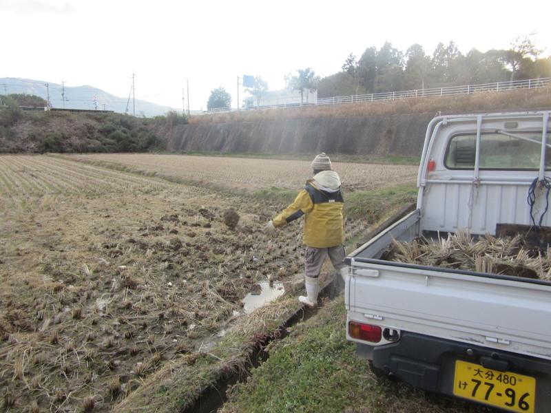 寒風の中の田圃の均平作業。