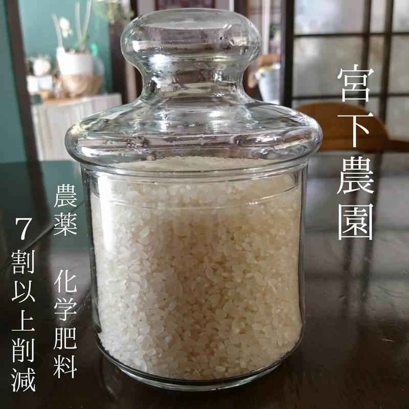 長崎県産 県内2件のみ 県認定特別栽培米ヒノヒカリ【宮下農園】