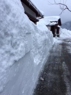豪雪について、ご心配と励ましのメールに感謝いたします。
