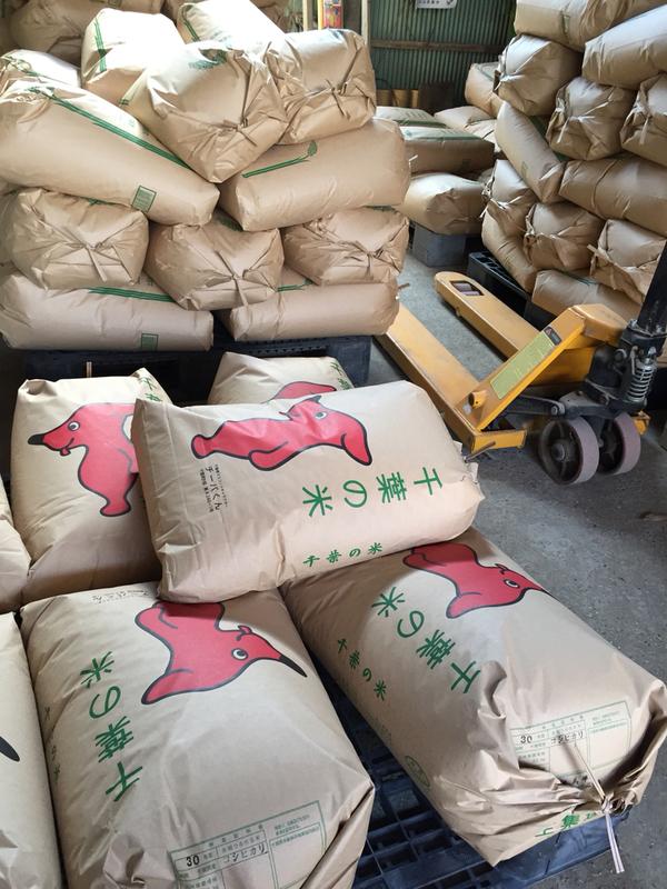 平成30年産米の販売を開始します。