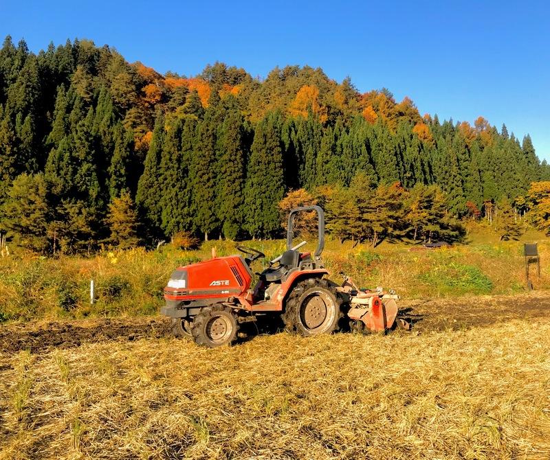 秋晴れに起耕