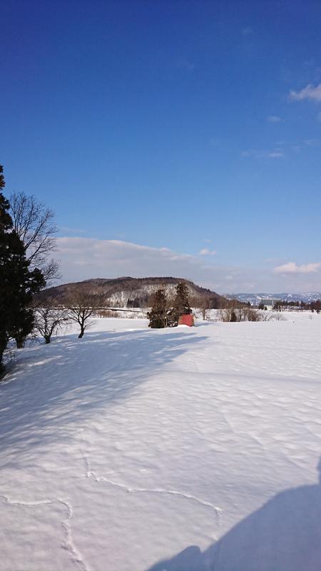 除雪で少し小高くなった所から・・・