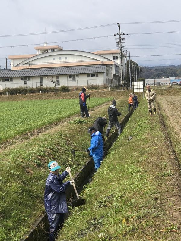 昨日はみーんなで田んぼの溝掃除