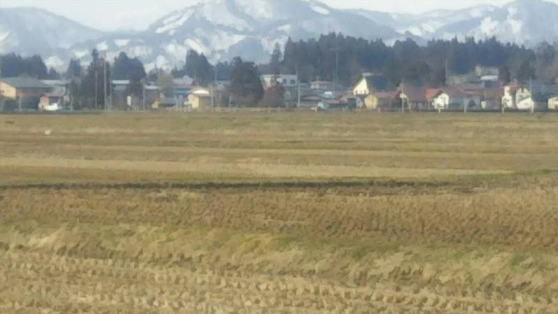 春の訪れ 米作り始動